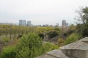 大阪城公園 16