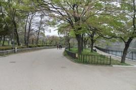 大阪城公園 43