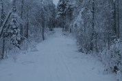 Raahe Winter 5