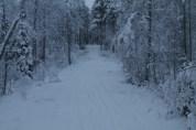 Raahe Winter 5