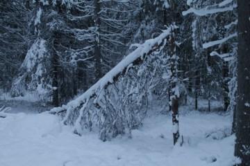 Raahe Winter 26