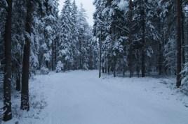 Raahe Winter 27