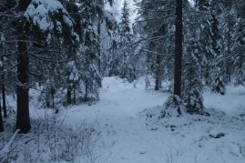 Raahe Winter 28