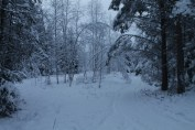 Raahe Winter 30