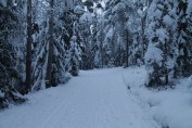 Raahe Winter 35