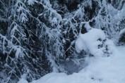 Raahe Winter 36