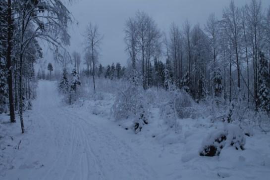 Raahe Winter 43