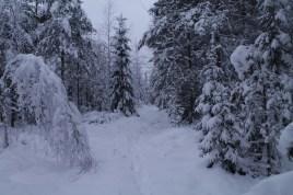 Raahe Winter 49