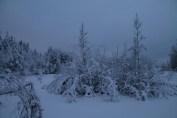 Raahe Winter 55