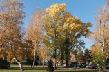 Joensuu Oct18_7