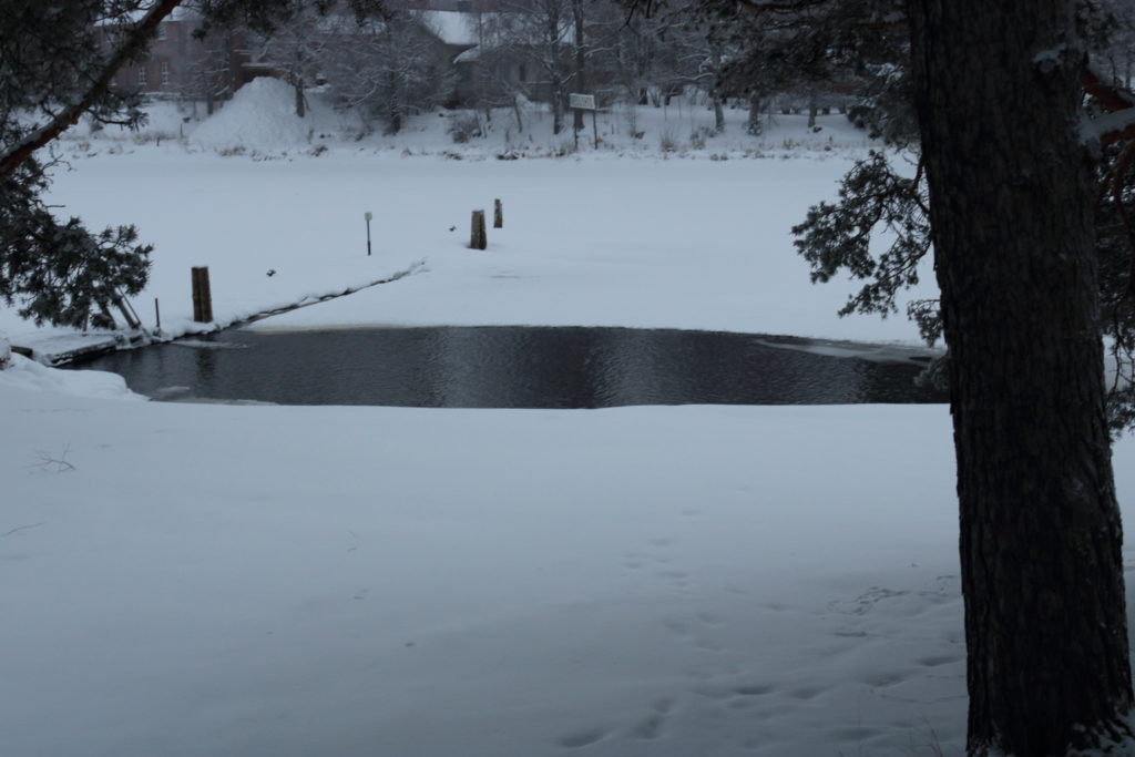 Unfrozen water in an otherwise frozen lake