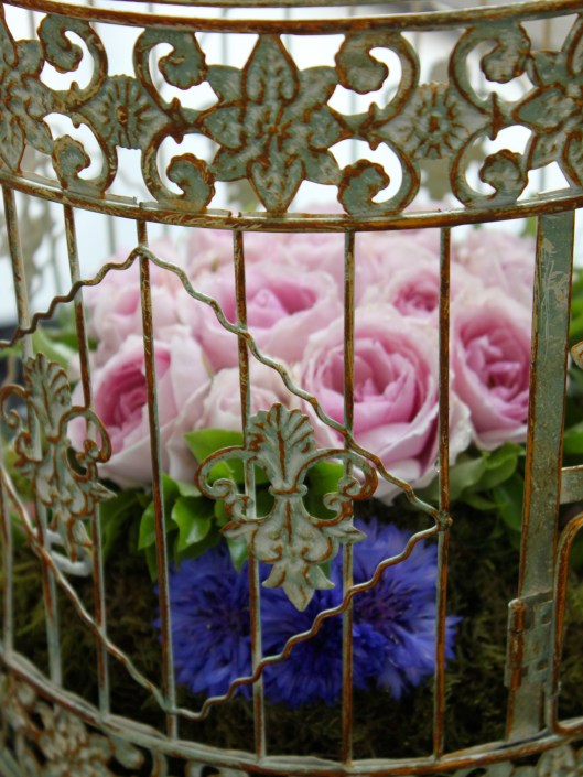 Roses in a Birdcage
