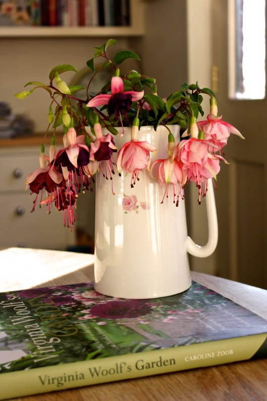 Fuchsia In A Vase