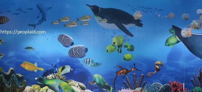 Ocean World 2