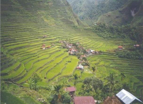 Banue Rice Terraces
