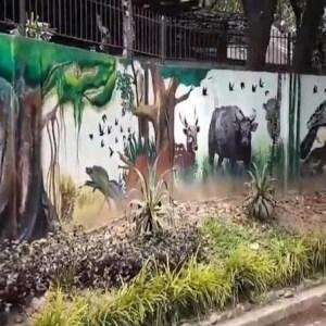 Ninoy Aquino Wildlife