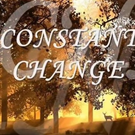 Constant Change Lyrics