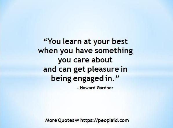 Howard Gardner Quotes