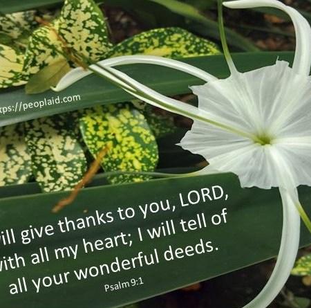 Inspiring Words for Today December 30