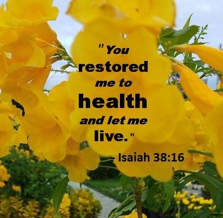 Inspiring Bible Verse for Today June 4
