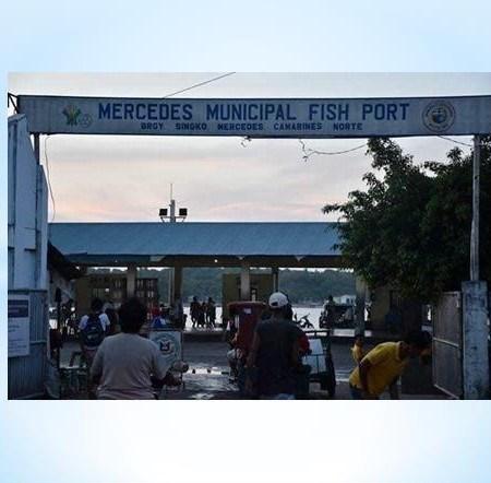 Mercedes Fish Port