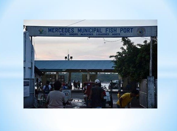 Mercedes Fish Port