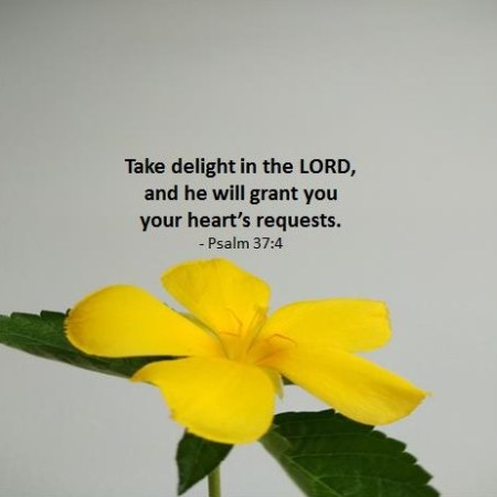 God grants the desires of your heart