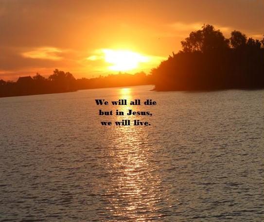 Gospel Reflection for July 5 2021