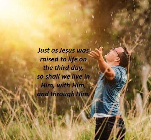 Gospel Reading and Reflection for August 9 2021