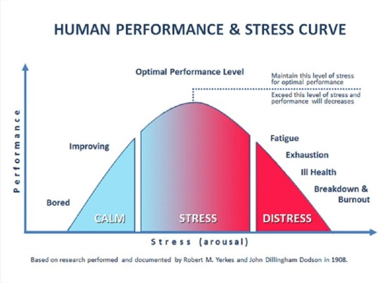 STRESS IN THE AIR: A Vital Lesson for Business Executives
