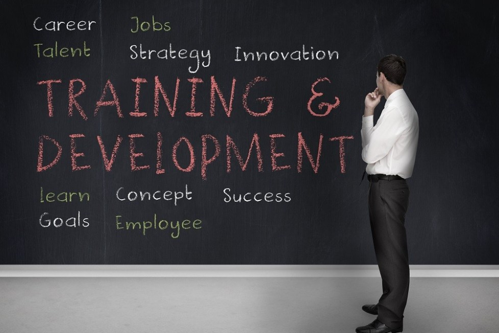 6 Tips for Developing an Effective Employee Training Program - People Development Magazine