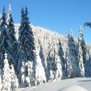 Η εμπειρία ενός «λευκού» ταξιδιού… για σκι στο Παμπόροβο