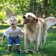 Λιγότερες πιθανότητες να προσβληθούν από άσθμα, αλλεργική ρινίτιδα ή έκζεμα, έχουν τα παιδιά τα οποία μεγαλώνουν με σκύλους ή γάτες στο σπίτι