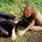 H θρυλική επιστήμονας, οικονομολόγος και ανθρωπίστρια Jane Goodall