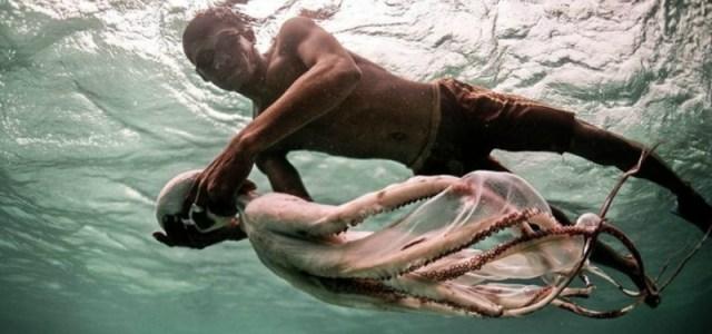 Ζουν μέσα στο νερό: Οι γενετικά μεταλλαγμένοι «τσιγγάνοι της θάλασσας» είναι ένα αληθινό φαινόμενο