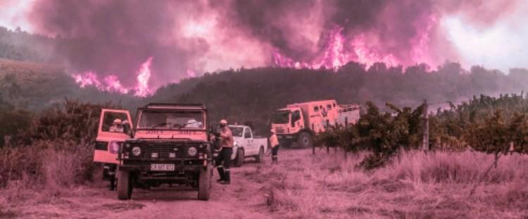 Η Αφρική είναι στα κόκκινα από φωτιές… Η άποψη των ειδικών της NASA