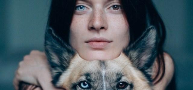 Τα ετεροχρωματικά μάτια, μοναδικά στο είδος τους