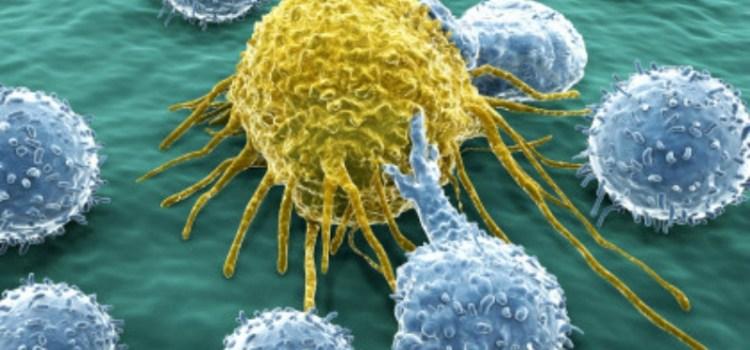 Καρκίνος: Μια ανακάλυψη για το ανοσοποιητικό σύστημα «ίσως βοηθήσει στην αντιμετώπιση όλων των μορφών»