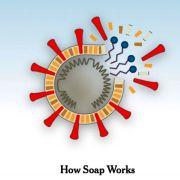 Πώς το Σαπούνι Σκοτώνει τον Κορωνοϊό  – New York Times, Science Why Soap Works