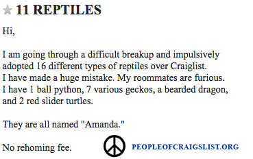 Funny Craigslist Reptile and lizard ad
