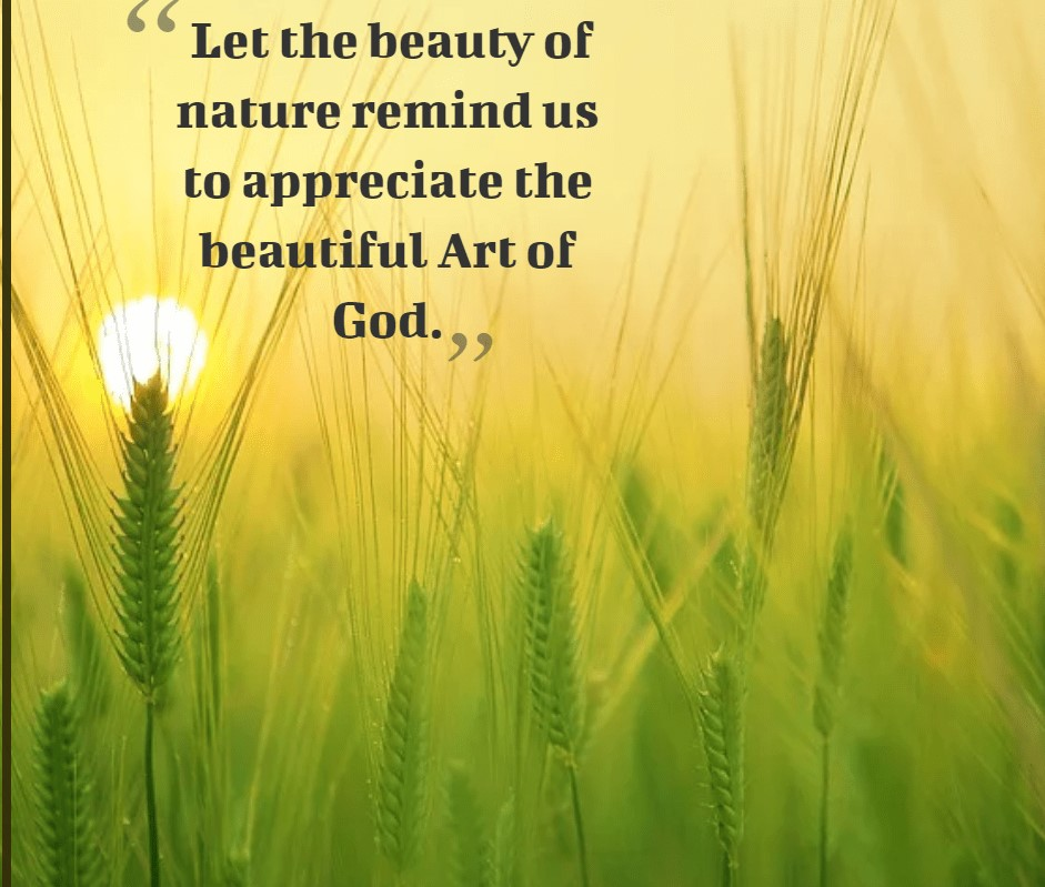 Beautiful nature quotes with picture