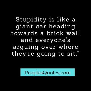 Best Sarcastic Quotes on stupidity