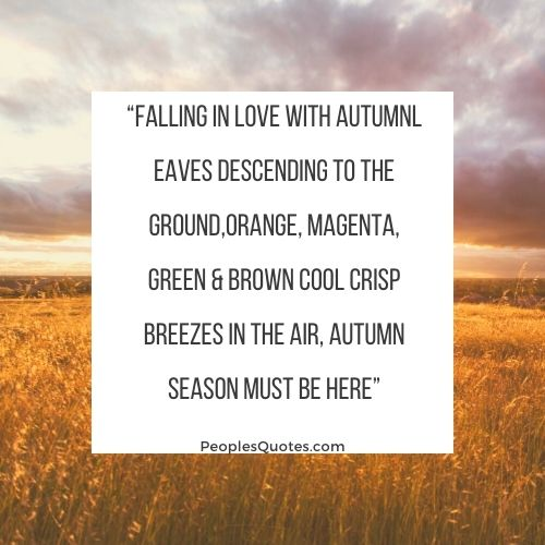 """Falling in love with Autumn quotes"