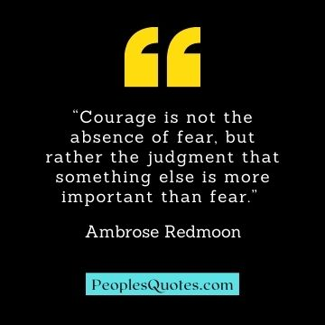 Courage, fear and boldness quotes