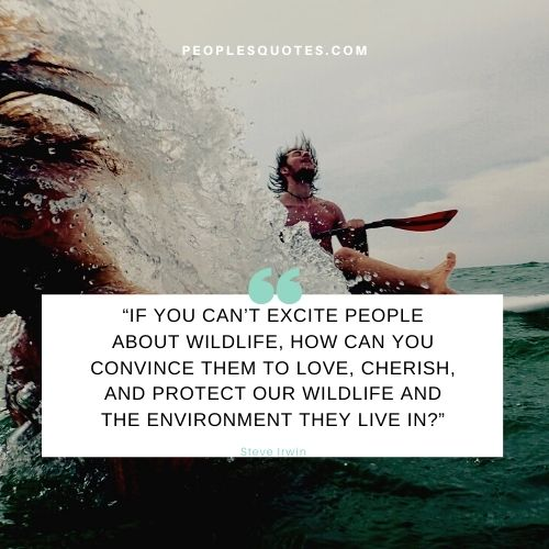 Saving wildlife quotes