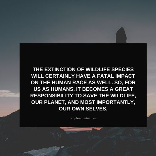 quotes on wildlife protection