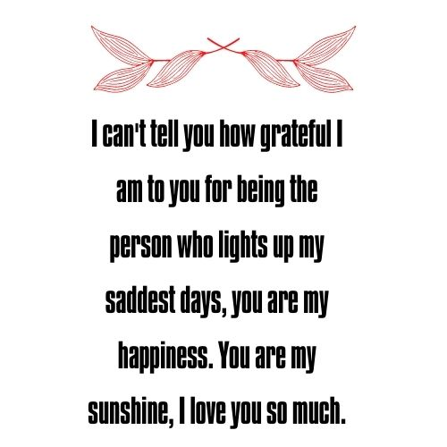 You are my sunshine quotes for Husband and Wife