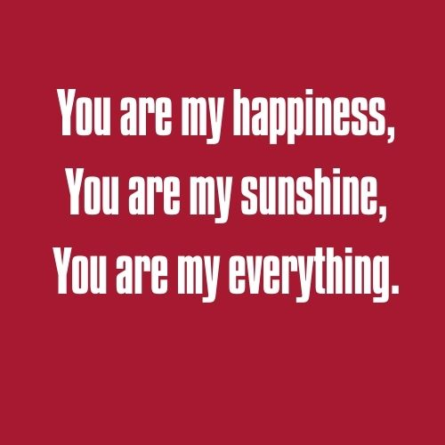 quotes for you are my sunshine