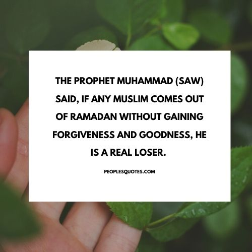 quotes in Islam about forgiveness