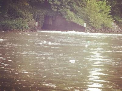 Tennessee River covered in trash ironically pouring out of the mouth of Sweetwater Creek. Perhaps @ijamsnaturecenter should introduce @florencealabama to their trash booms